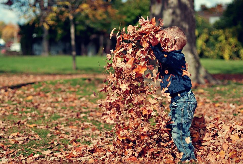 boy-1209964_960_720.jpg